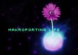 Makroporting Life – ein Filmprogramm zur Flucht nach vorne